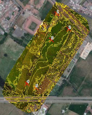 Enrique_results_17jul2021