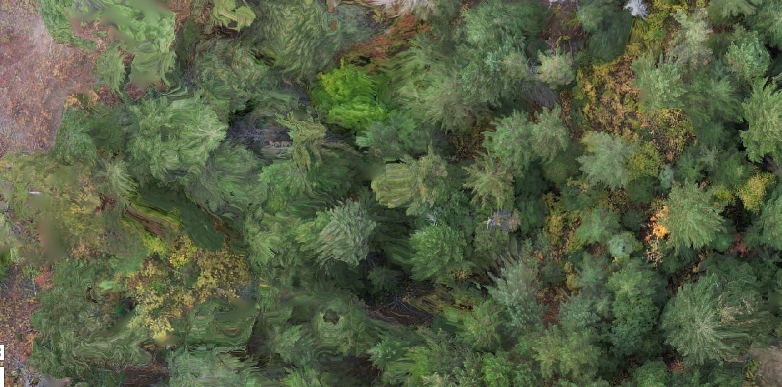 Impressionist Trees.PNG